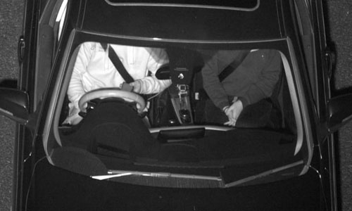 The driver using their mobile phone while driving